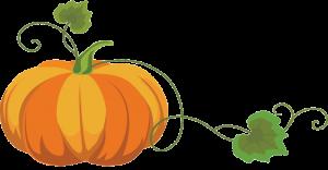 pumpkin-trp
