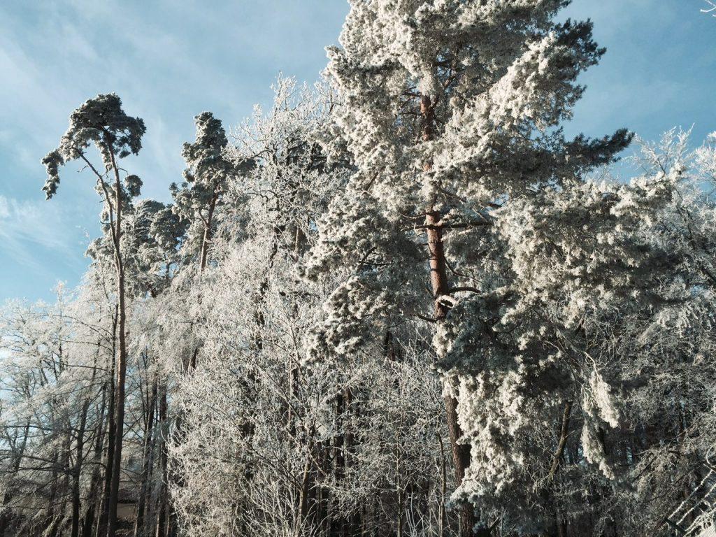 Industrial snow: a strange winter phenomenon