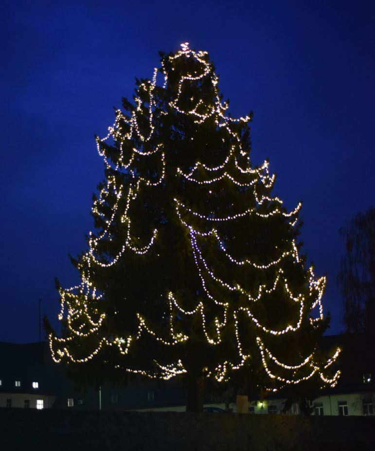 Let there be light: USAG Ansbach lights historical tree after local requests