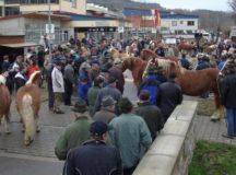Traditional horse market in Creglingen (Photo: www.greglingen.de)