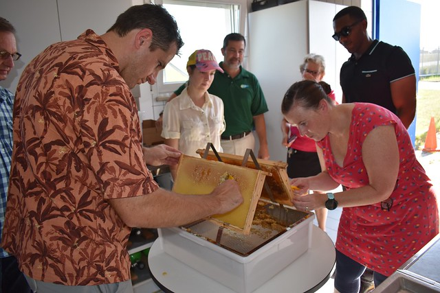 Daniel Woernlein, Environmental Protection Specialist with USAG Ansbach's Department of Public Work's Environmental Management Division, and Heather Forsberg, a graduate of the beekeeper's training, scrape the wax caps from the honeycomb as part of the honey extraction process at the U.S. Army Garrison Ansbach firefighting training center July 24.